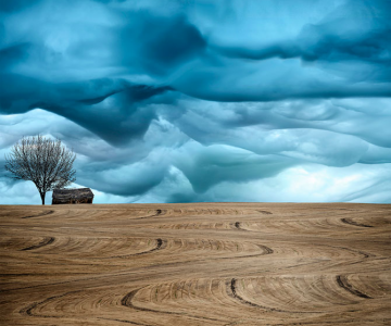 Peisaje rurale superbe, de Lisa Wood