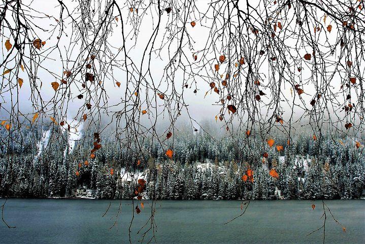 Cele mai frumoase ipostaze ale iernii, in poze sublime - Poza 14