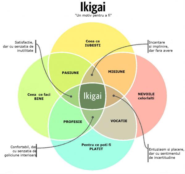 Ikigai: Secretul japonez al unei vieti mai lungi, mai fericite - Poza 1