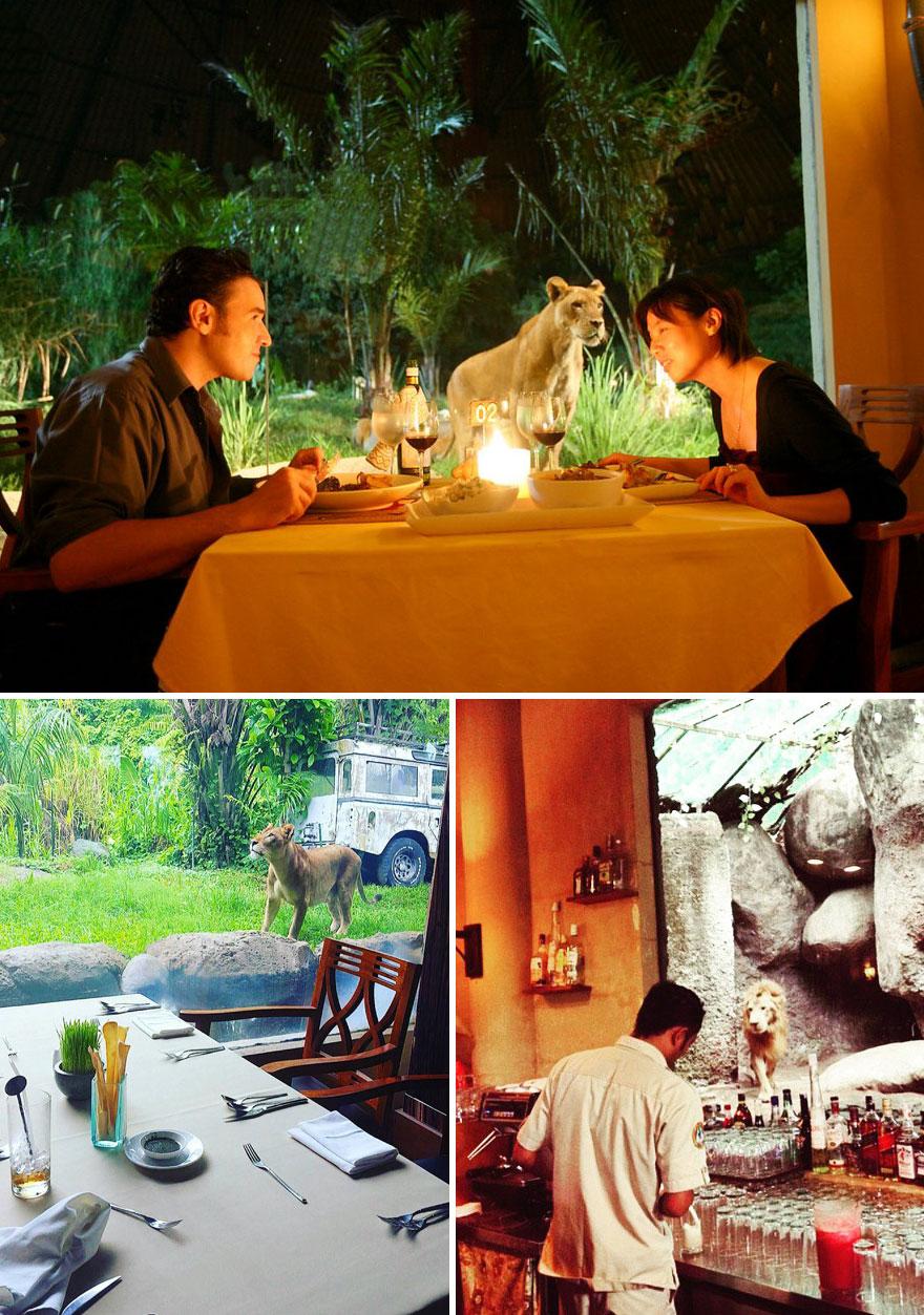 Distinctie si rafinament: Restaurante uluitoare din jurul lumii - Poza 20