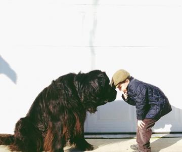 Julian si Max: Povestea unei prietenii