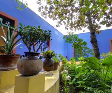 Casa Azul: Un tur memorabil in cel mai intim loc al Fridei Khalo