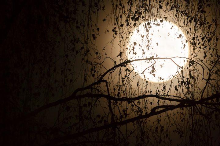 Cele mai frumoase ipostaze ale lunii, in poze superbe - Poza 4