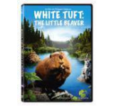 White Tuft: the Little Beaver