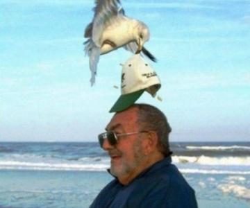 Momente haioase de pe litoral, in imagini savuroase