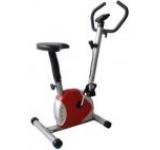 Bicicleta Fitness mecanica Fittronic FTB801 (Rosie)