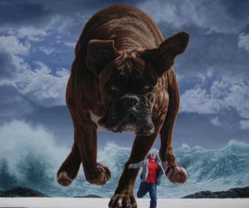Picturi suprarealiste spectaculoase de Joel Rea