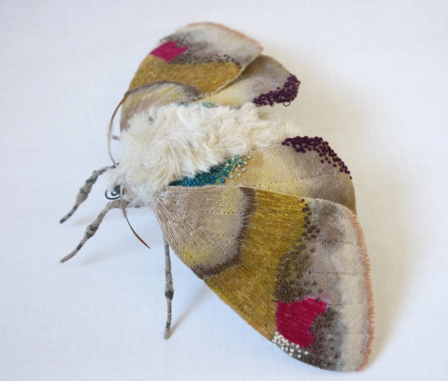 Gingasia fluturilor crosetati, cu Yumi Okita - Poza 13