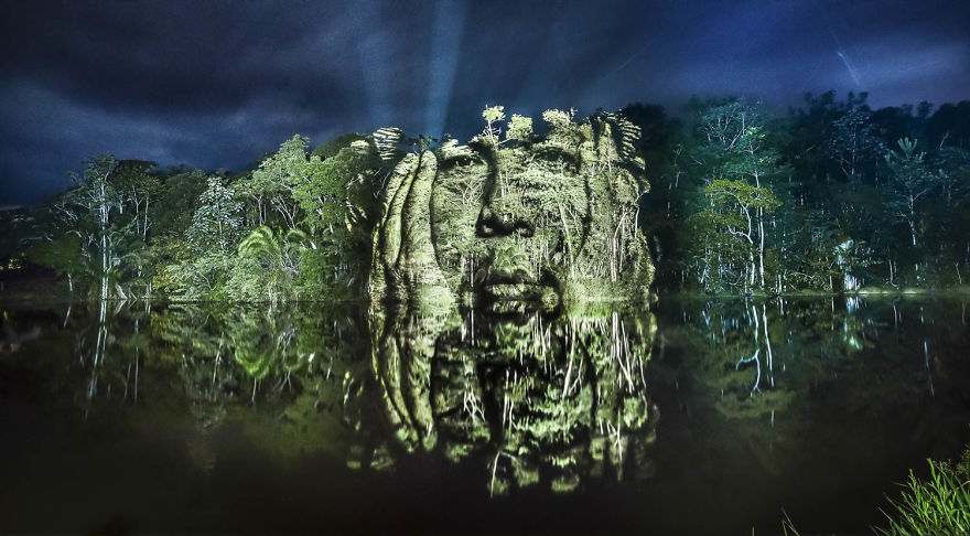 Un tribut adus padurii tropicale - Poza 1