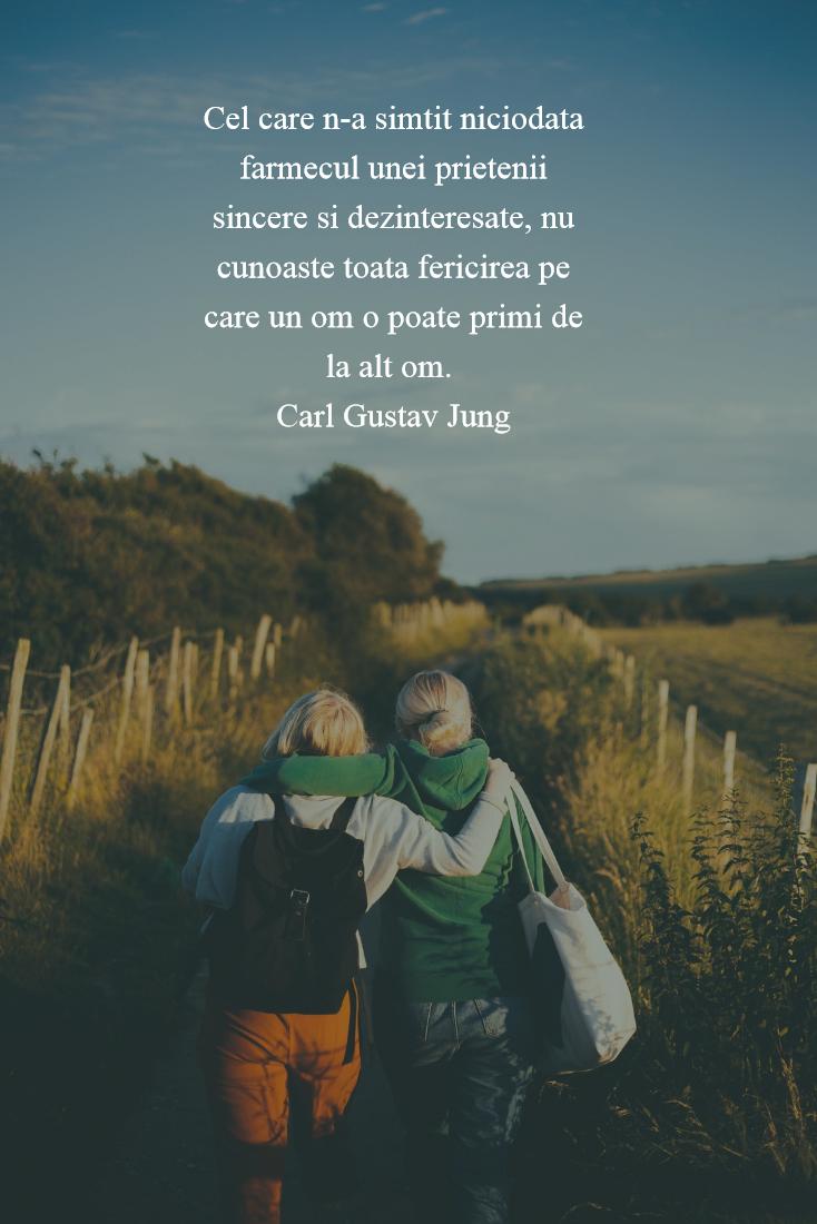Cele mai frumoase citate despre prietenia adevarata - Poza 2