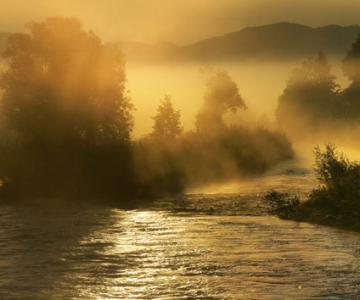 Natura in 25 de fotografii de Norbert Maier