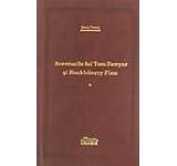 Aventurile lui Tom Sawyer si Huckleberry Finn Vol. 1+2
