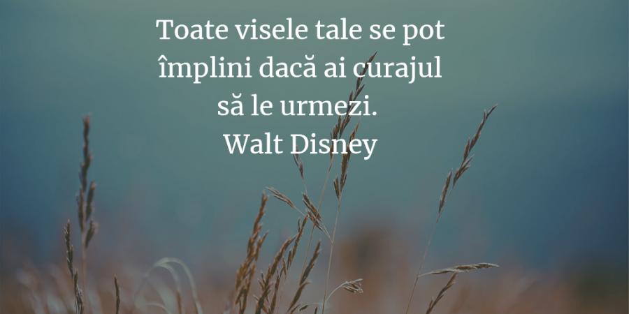citate despre vise Citate motivationale care te ajuta sa ti vezi visul cu ochii citate despre vise