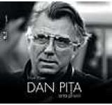 Dan Pita. Arta privirii