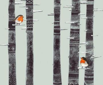 Basme nelinistitoare, ilustrate de Sandra Dieckmann