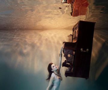 Fotografii gratioase sub apa, de Harry Fayt