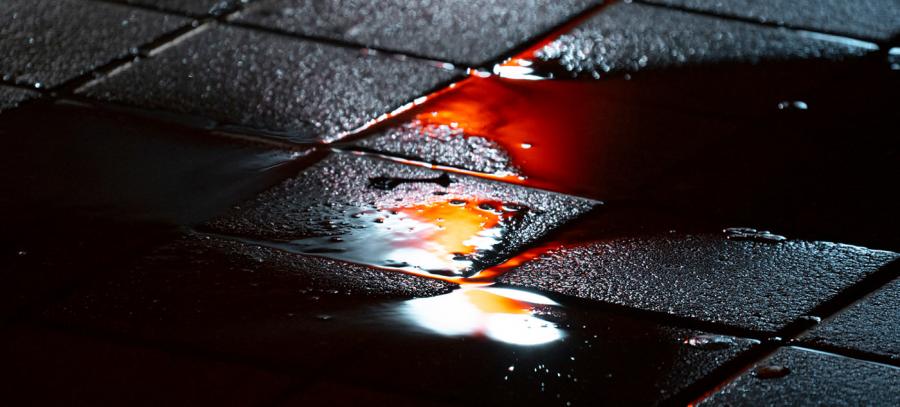 Nuantele picaturilor de ploaie, in poze fermecatoare - Poza 4