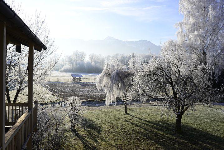 Cele mai frumoase ipostaze ale iernii, in poze sublime - Poza 16