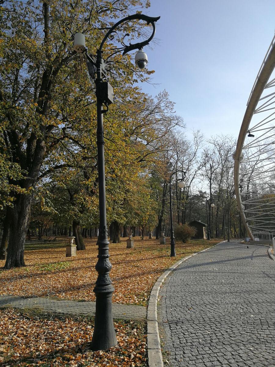 Parcul Nicolae Romanescu: Minunea verde din Banie, in poze superbe - Poza 16