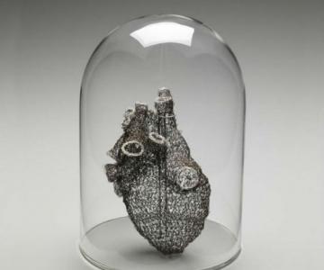 Anatomie crosetata, de Anne Mondro