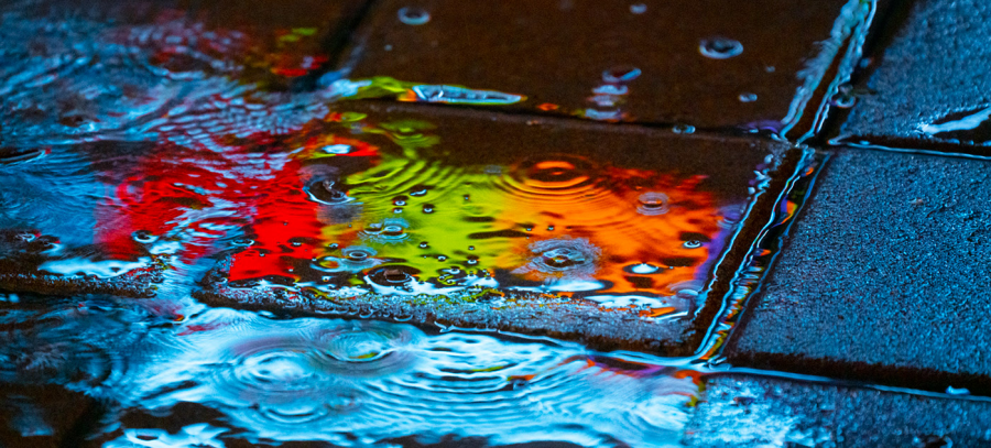 Nuantele picaturilor de ploaie, in poze fermecatoare - Poza 1