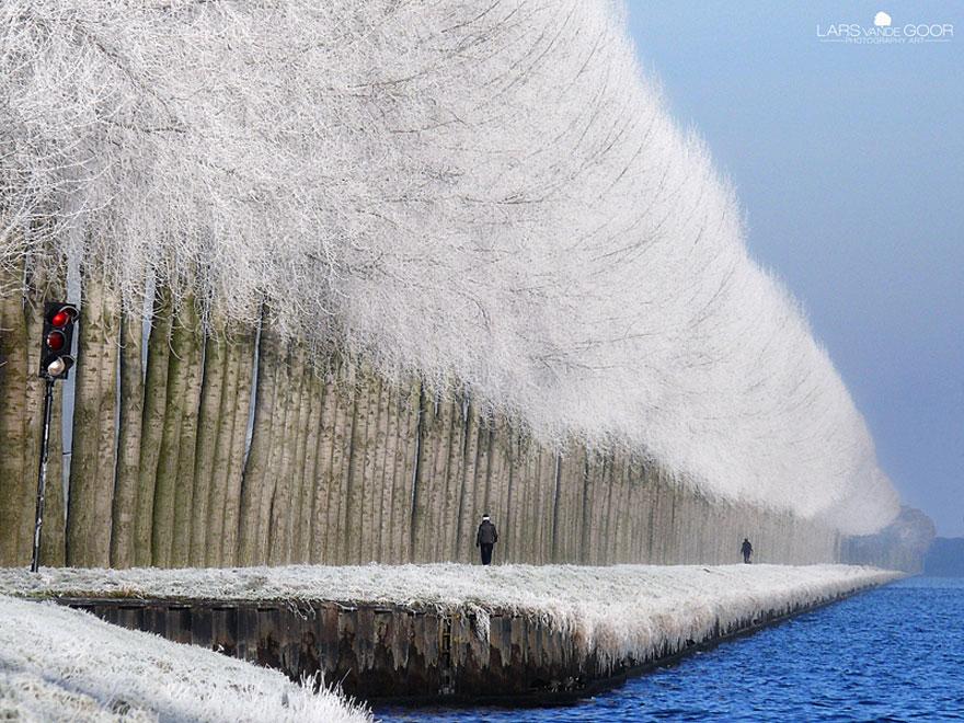 Cele mai frumoase peisaje de iarna - Poza 15