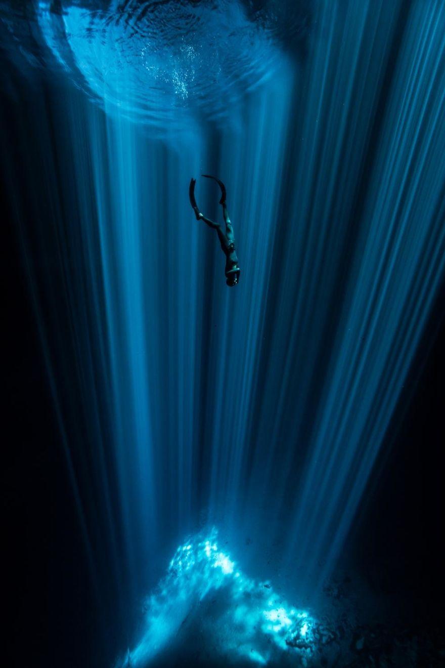 Fotografii superbe din uimitoarea lume subacvatica - Poza 15