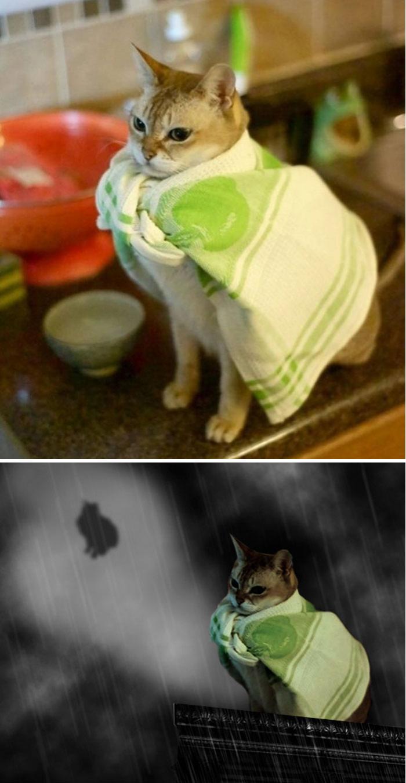 Uimitoare si hilare: Cele mai tari poze prelucrate in Photoshop - Poza 21