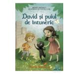 David si puiul de intuneric - Maria Surducan