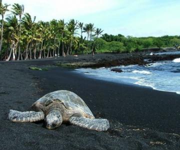 Cele mai ciudate plaje din lume, de o frumusete incredibila