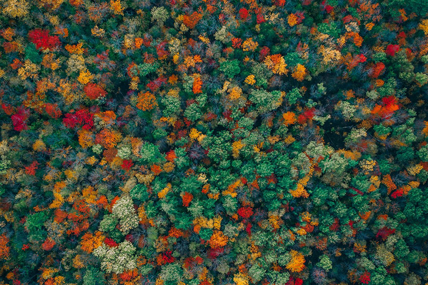 Cele mai frumoase fotografii facute cu drona - Poza 5