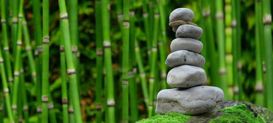 Cele patru reguli ale lui Lao Tzu pentru o viata implinita - Poza 1