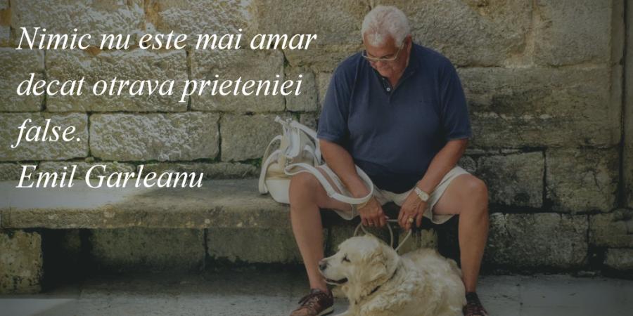 Cele mai frumoase citate despre prietenia adevarata - Poza 18