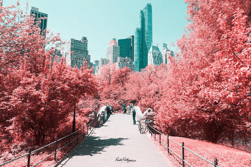 Lumea in infrarosu, intr-un set de fotografii superbe - Poza 17