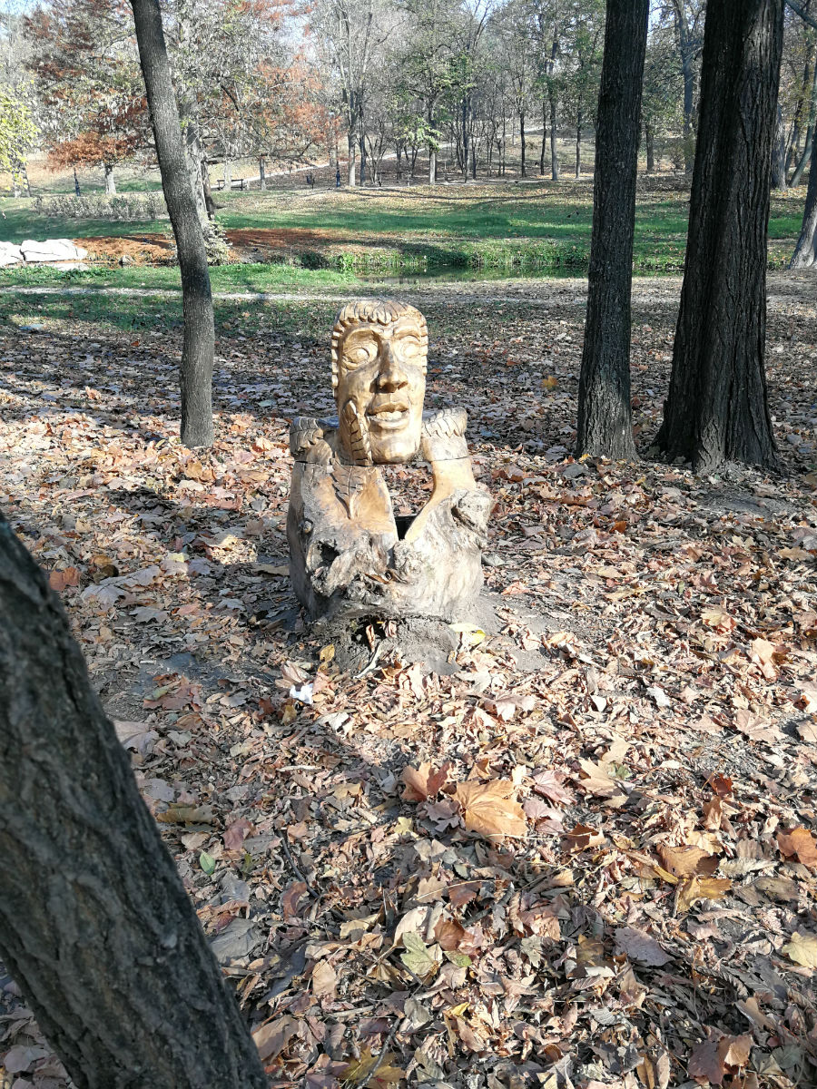 Parcul Nicolae Romanescu: Minunea verde din Banie, in poze superbe - Poza 4