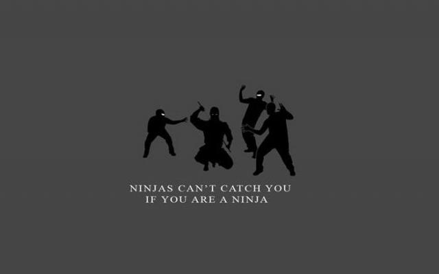 Ninja nu pot sa te prinda - Poza 20
