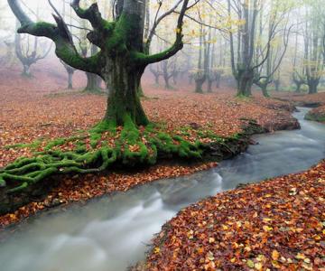 Magia peisajelor Spaniei, cu Jose Ramon Irusta