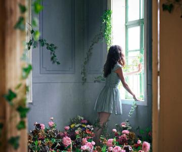Fotografii in gradina secreta, de Lara Zankoul