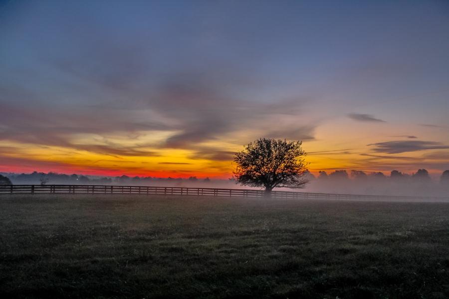 Cele mai frumoase peisaje de toamna, in imagini superbe - Poza 21