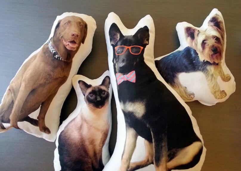 Cadouri inedite pentru posesorii de animale - Poza 4