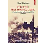 Ferestre spre furnalul rosu. Urbanism si cotidian in Hunedoara si Calan (1945-1968)