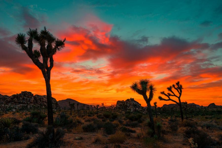 Apusuri de soare sublime in poze spectaculoase - Poza 21