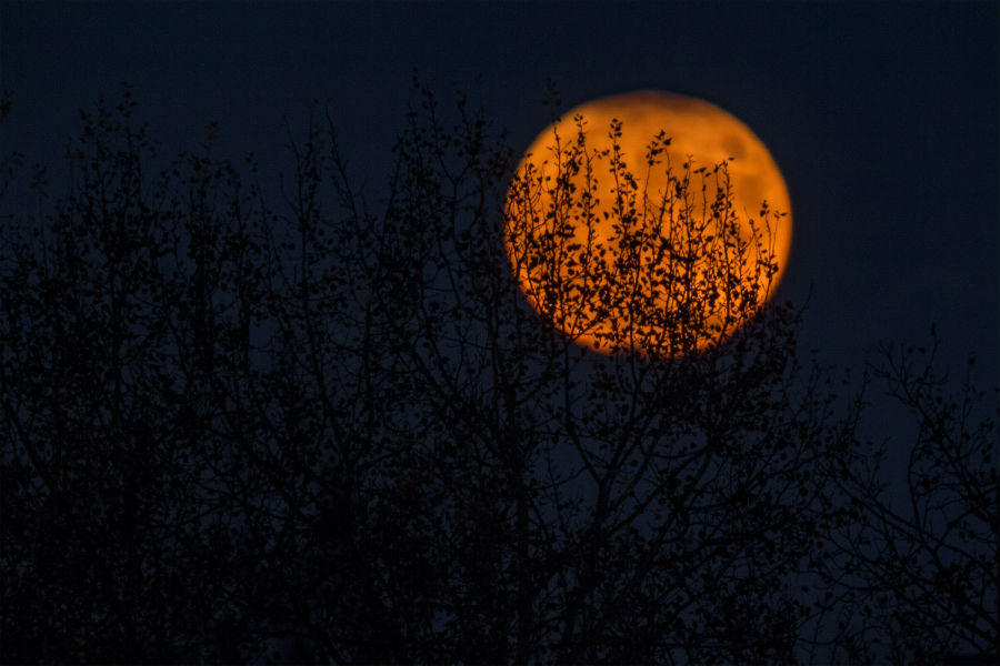 Cele mai frumoase ipostaze ale lunii, in poze superbe - Poza 15