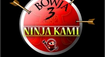 Play: Ninja Kami