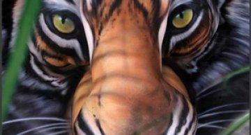 Un tigru...