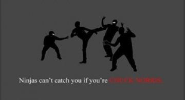 Ninja nu pot sa te prinda
