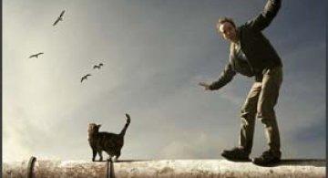 Mattijn Franssen - El si pisica