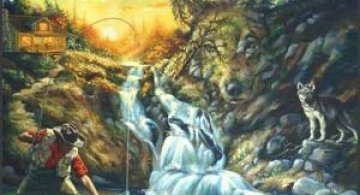 Donald Rust - Iluzii impresionante