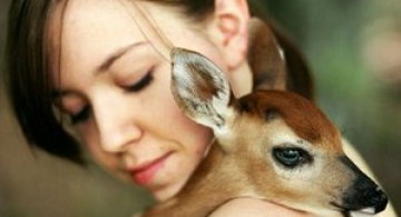 Bambi si Emmy Lee
