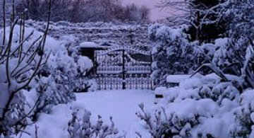 Cat de mult poti sa iubesti iarna?